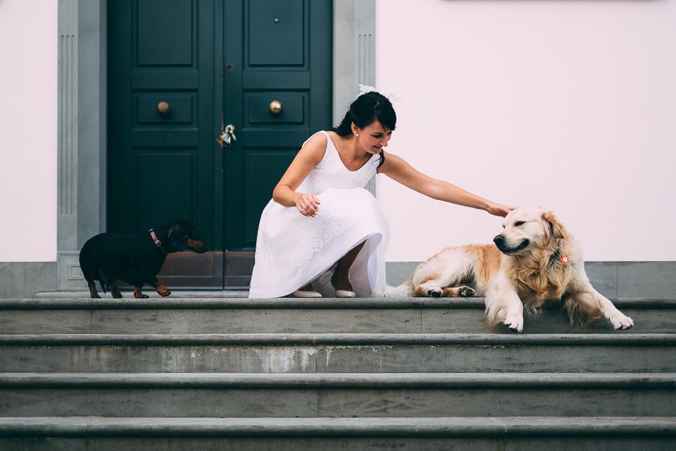 sposa in abito bianco accarezza il suo cane