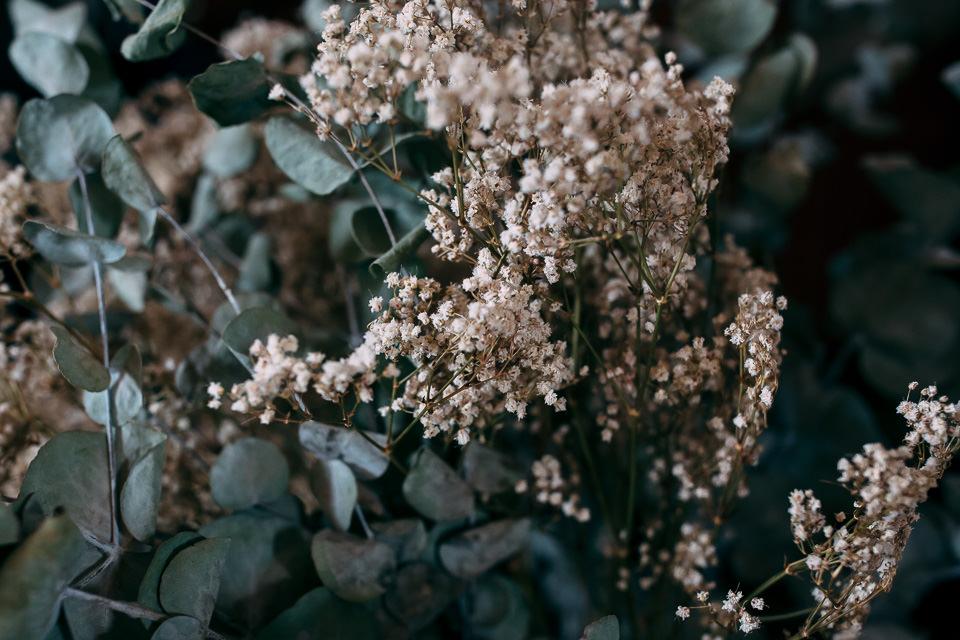 fiori bianchi autunnali