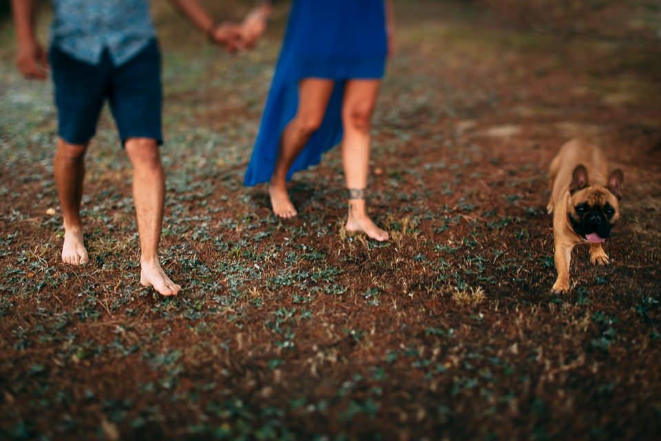 ragazzi alternativi camminano scalzi nel bosco con il cane