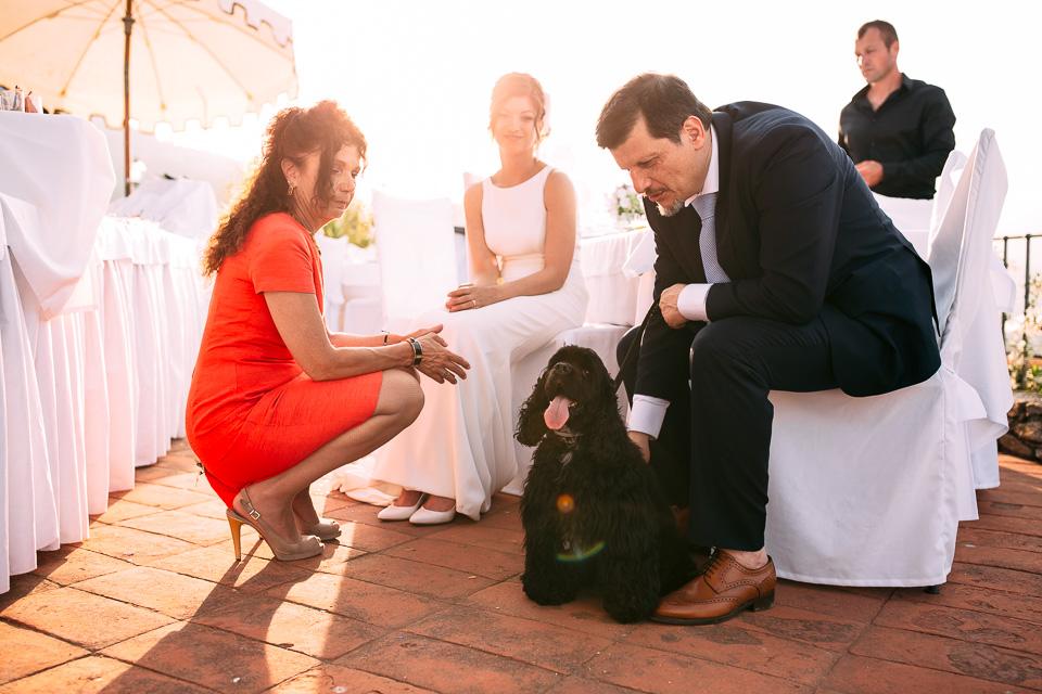 la sposa in abito bianco e il suo cane al paradiso di manù