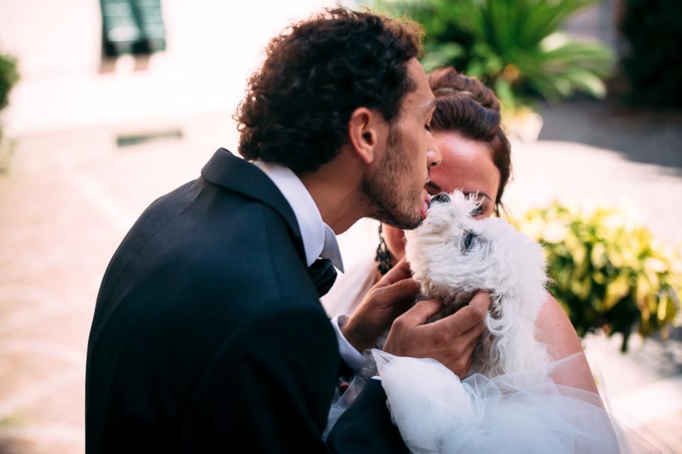 lo sposo bacia il suo cane