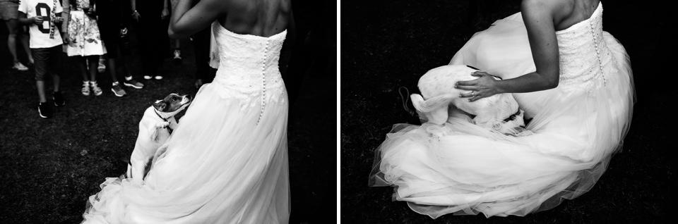 matrimonio la ginestra