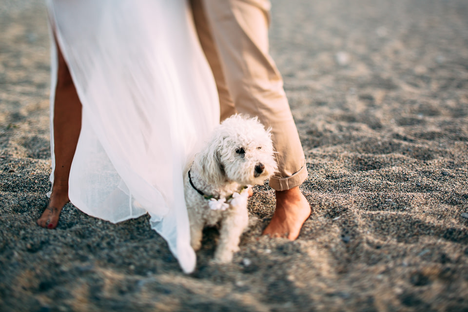 engagement riviera ligure con il cane