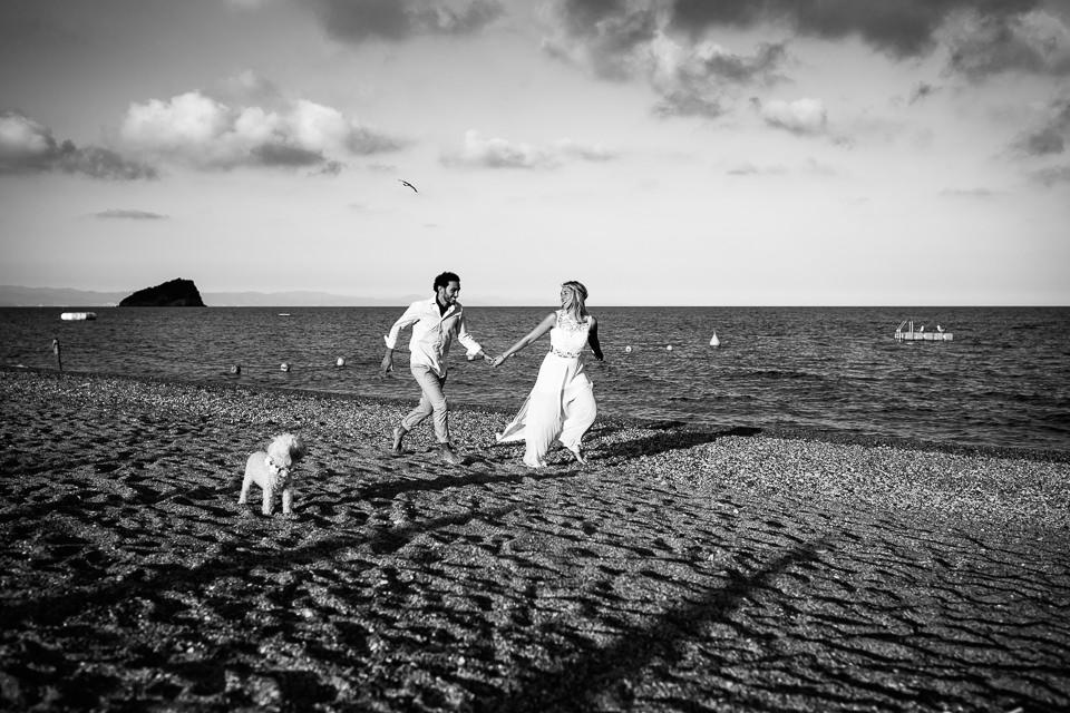 passeggiata al mare col cane