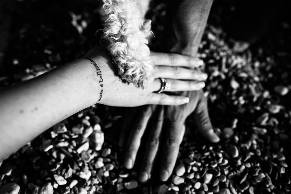 due mani e una zampa di cane sulla spiaggia
