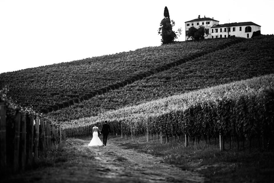 sposi passeggiano tra i vigneti di tenuta carretta